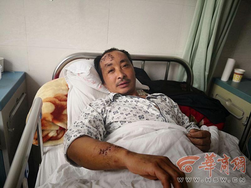汉中一村民进山采蘑菇被黑熊攻击 跳